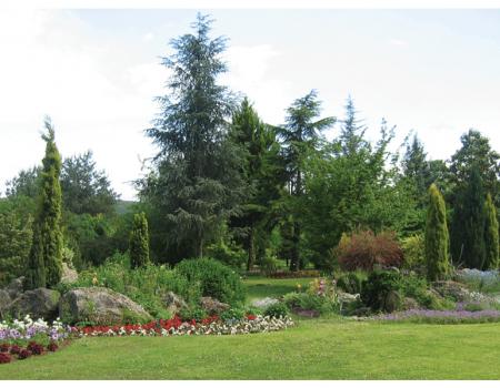 Karaca Arboretum (Canlı Ağaç Müzesi)